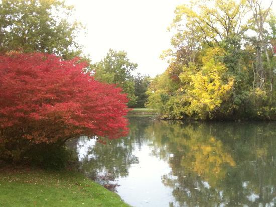 Kitchener, Kanada: automne à Victoria Park