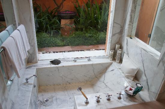 The Oberoi Rajvilas: Bathroom with a garden