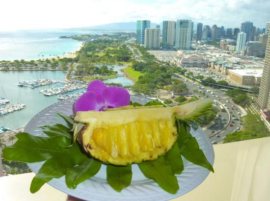 The Equus: Pineapple is a work of art,note the view
