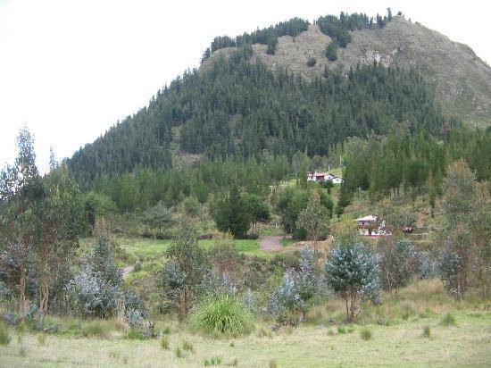 Granja Porcon: El sitio es muy verde