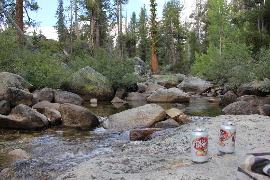 Tuolumne Meadows: Our lunch spot at the Yosemite Creek picnic area.
