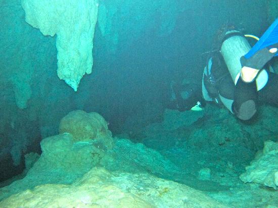 Grand Cenote: scuba in the cenote