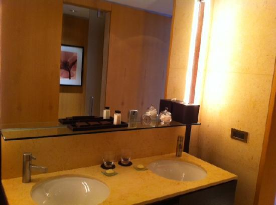 ปาลาซิโอดูโฮ-พาร์คไฮแอทบัวโนสไอเรส: Bathroom