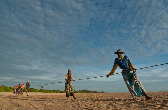 Nilaveli, Sri Lanka: fishermen pulling the net