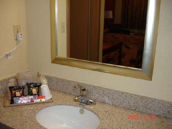 Super 8 Reynolds /East Columbus Area: Vanity Area