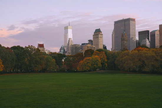 Central Park Sunset Tours: Sheep Meadow at Sunset