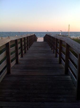 Royal Palms: Boardwalk to the beach