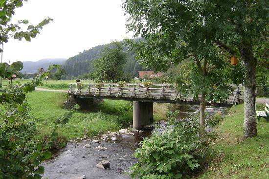 Landhotel Hirschen: lots of beautifull nature to see