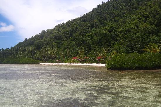 Raja Ampat Dive Lodge: Private Beach