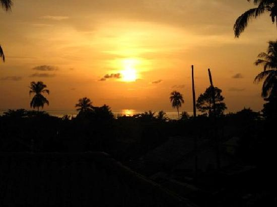 Paradise Bungalows: View from the terrace