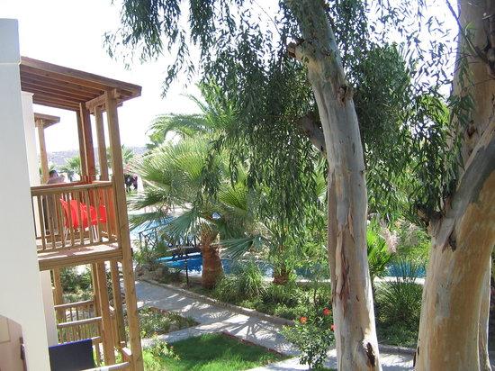 Magnific Hotel: Garden 1