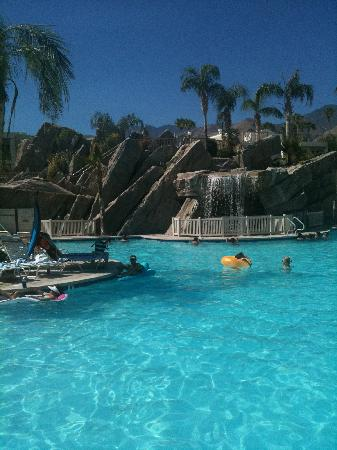 Palm Canyon Resort & Spa: bring your floatie