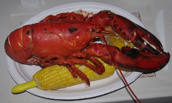 MacKinnon-Cann Inn: My 2 pound lobster at Stanley's Lobster Pound