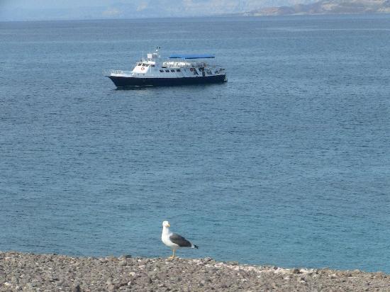 Baja Boat Adventures : ADVENTURE IN EL PARDITO ISLAND