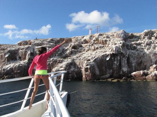 Baja Boat Adventures