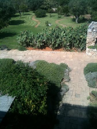 Masseria Don Cirillo: from the roof, view of the garden