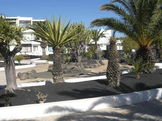 Apartamentos Los Molinos: Grounds