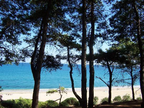 Irinna Hotel: abit of Skala beach