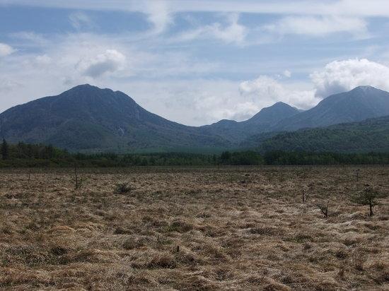Senjogahara Field