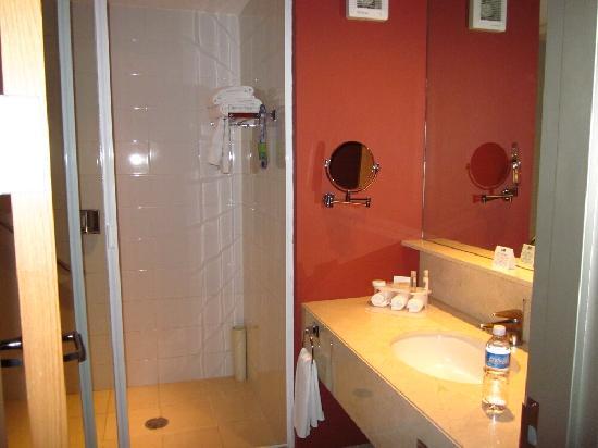 Holiday Inn Express Mexico Reforma: Bathroom