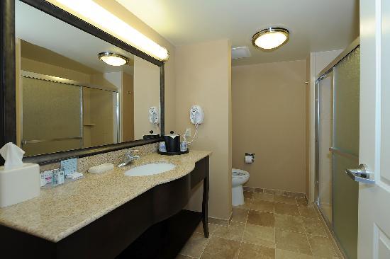 Hampton Inn & Suites Scottsboro: Guest Room Bathroom