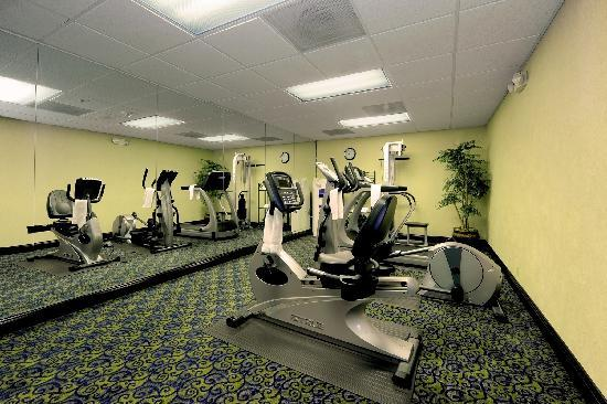 Holiday Inn Express & Suites Atlanta N-Perimeter Mall Area: Fitness Center