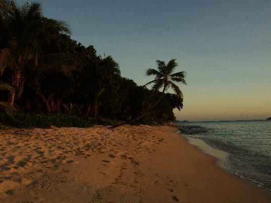 โตโกริกิไอซ์แลนด์รีสอร์ท: The beach