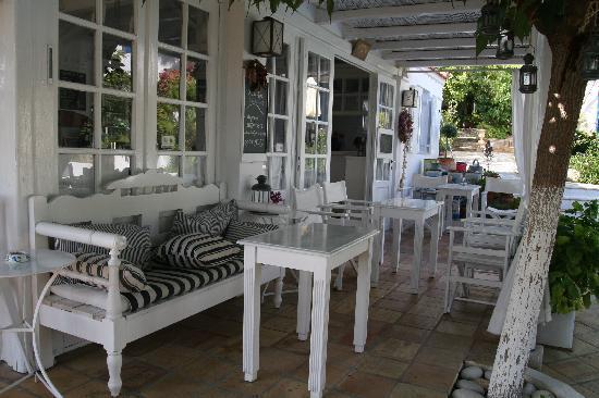 Villa Ippocampi: Receptie