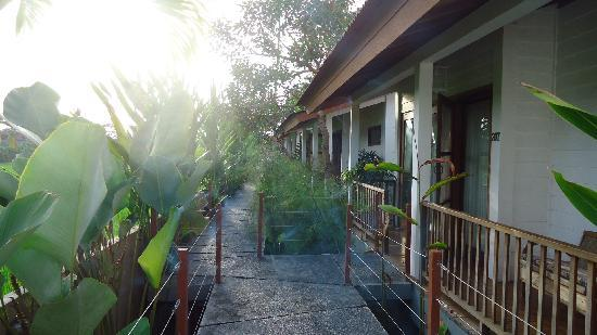 The Studio Bali: Villa path
