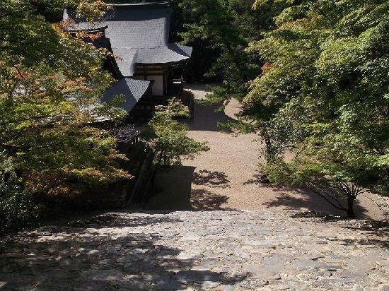 Jingoji Temple: 金堂から