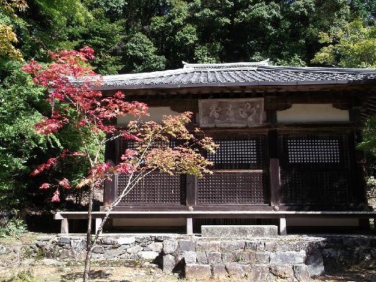 Jingoji Temple: 少し早い紅葉
