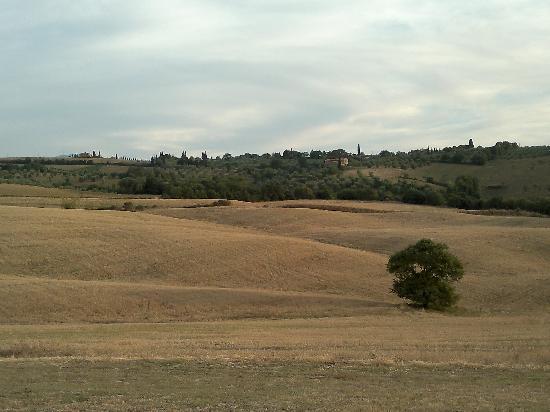 Podre al Salcio: another view from Il Salcio