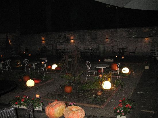 Dynia: garden at night