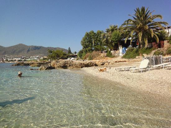 Hersonissos Maris Hotel and Suites: пляж слева