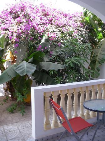 Devon Lodge: Terrace Apt 4