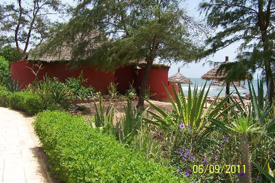 Lookea Royal Baobab: Jardin vue plage
