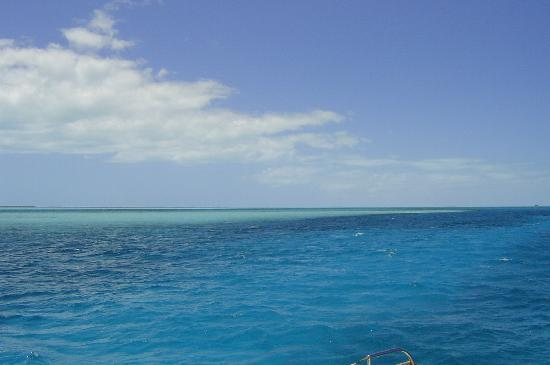 Paradise Found Sailing: Blue, blue, sail on thru. White, white you just might