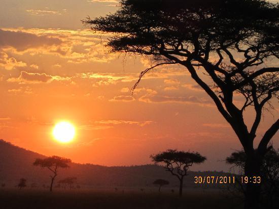 Honey Badger Lodge: Stunning safari sunsets