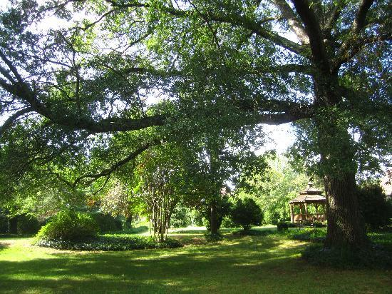 Longacre: View of the grounds behind the house.