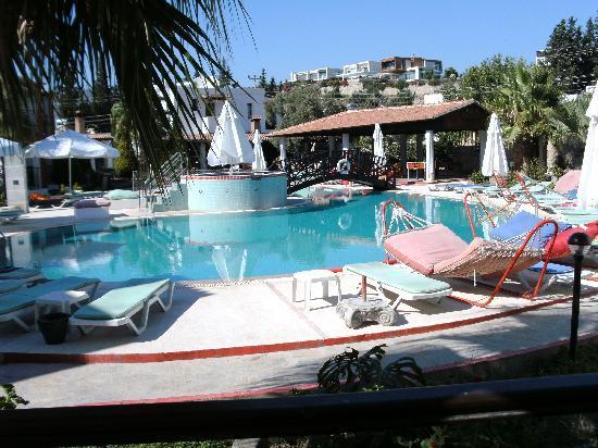 Sirca Apartment Hotel : pool