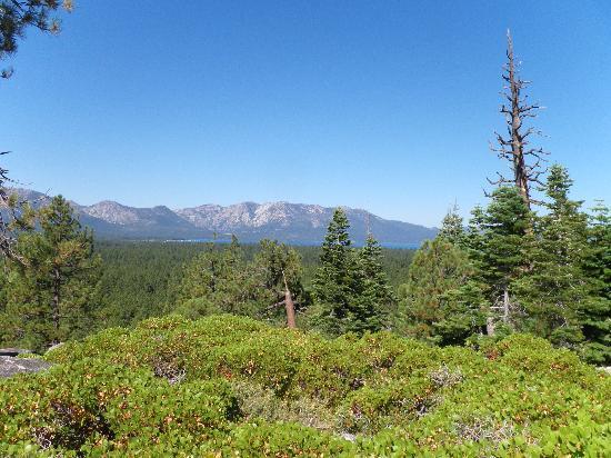 Wanna Ride Tahoe Bike Shuttle & Tours: Amazing view