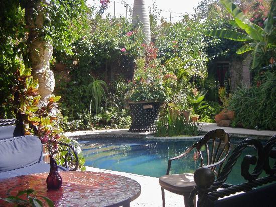 Las Sabilas : Pool area hangout