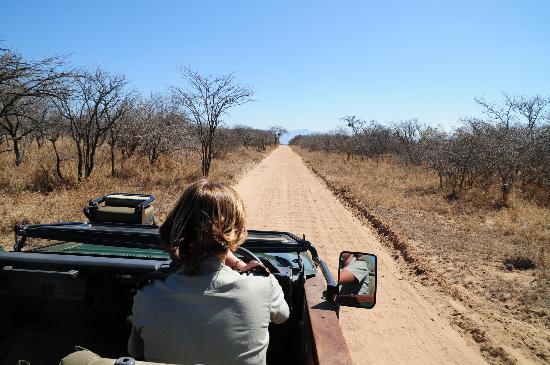 easy drive to Kapama river lodge