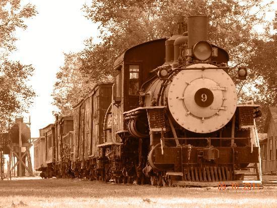 Laws Railroad Museum: Train