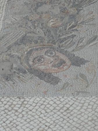 Case Romane a Piazza della Vittoria: Particolare mosaico
