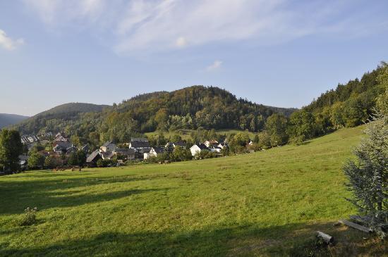 Hotel-Gasthof Waldblick : veiw from my balcony