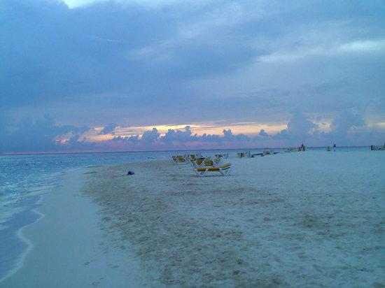 Hotel Posada Del Mar: Beach