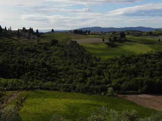 Quercia al Poggio: Amazing countryside