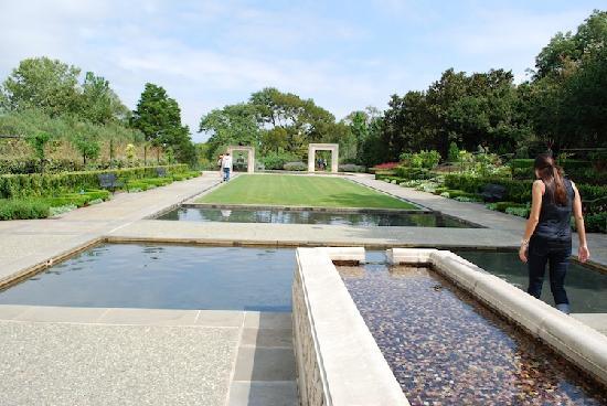 สวนรุกขชาติและพฤกษชาติดัลลัส: Water Feature