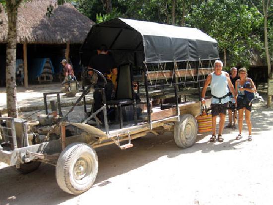 Hidden Worlds Family Cenote Park: Jungle Buggy